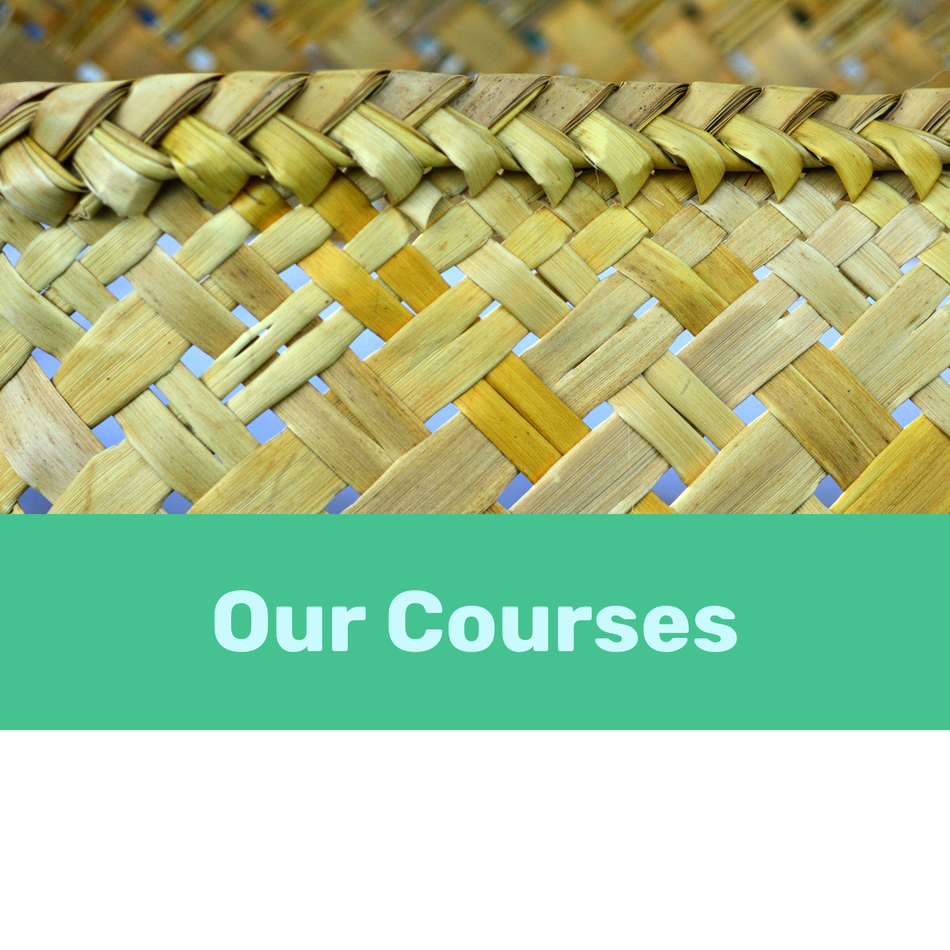 Our Course